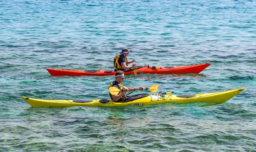 Kayaking Basics and Tips – What Should You Consider When You Want to Buy a Kayak?
