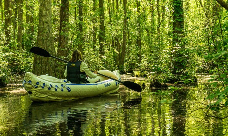 Why Select an Inflatable Kayak vs a Rigid Kayak?